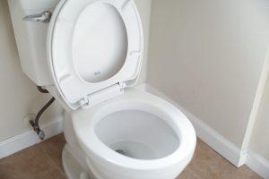 anxieties-toilet-present-moment